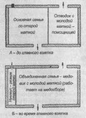 Схема использования матки-помощницы в лежаке