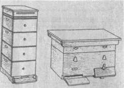 Общий вид улья-лежака (справа) и многокорпусного улья (слева)