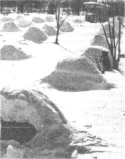 Площадка для размещения снега
