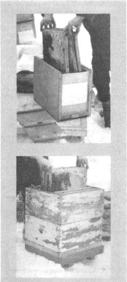 Пересадка пчелиных семей из ульев в пакеты зимой для перевозки на юг